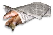 Fish_wrapper1_2